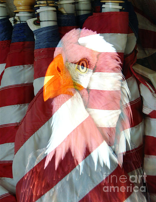 Eagle And Flags Print by M and L Creations