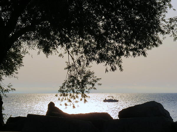 Kay Novy - Early Morning Fishing