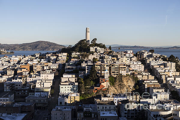 Early Morning Light On Telegraph Hill And Coit Tower Park In San Francisco Print by Trekkerimages Photography
