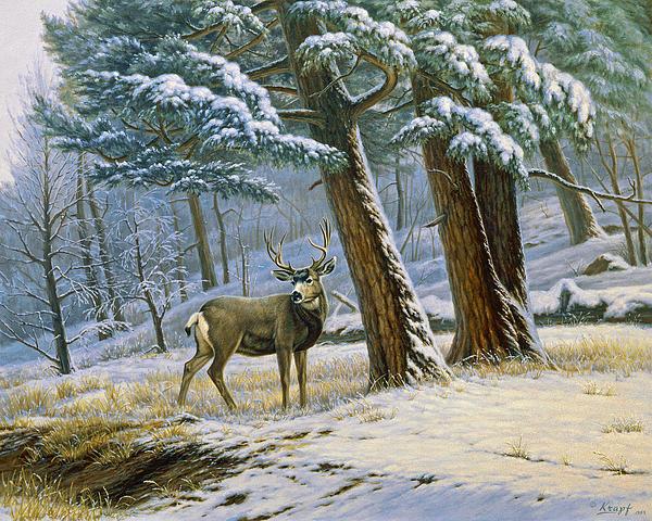 Early Snow- Mule Deer Print by Paul Krapf