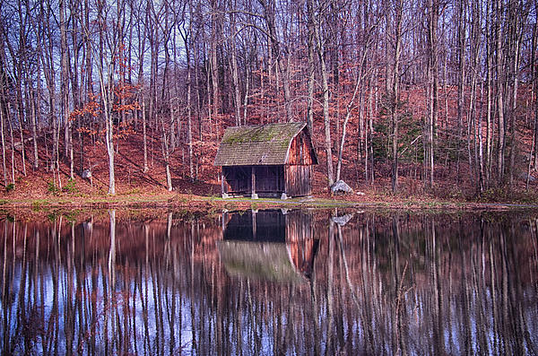 Early Winter At The Boat House Print by Daphne Sampson