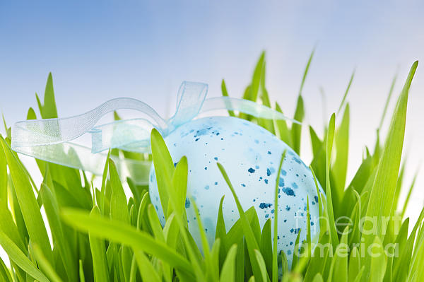 Easter Egg In Grass Print by Elena Elisseeva