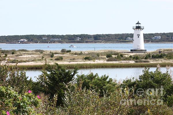 Edgartown Lighthouse With Wildflowers Print by Carol Groenen