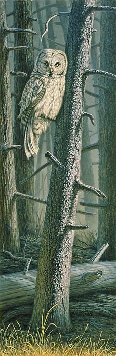 Edge Of The Burn Print by Paul Krapf