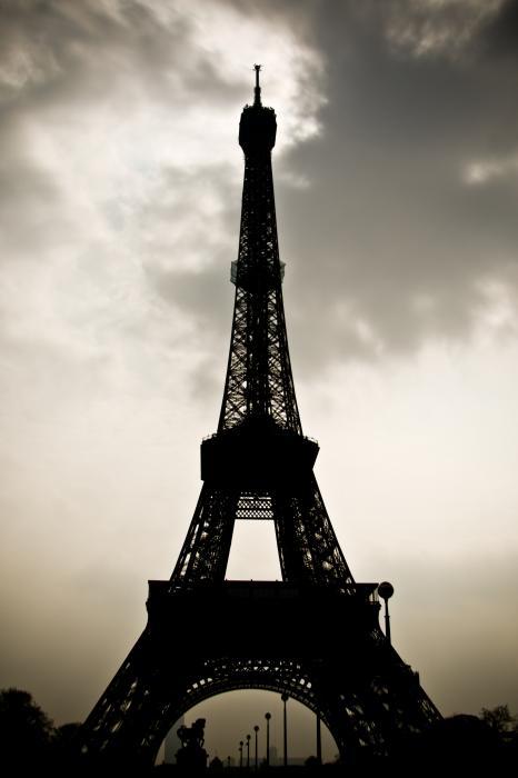 Eiffel Tower Silhouette Print by Nila Newsom