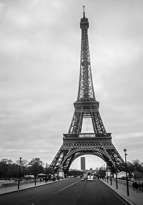 Eiffel Tower Print by Steven  Taylor