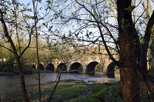 Eight Arch Bridge In Spring Print by Toni Kistner