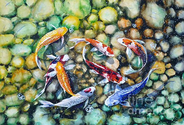 Eight koi fish playing with bubbles by zaira dzhaubaeva for Playing koi