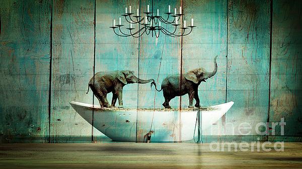Aimelle - Elefantos