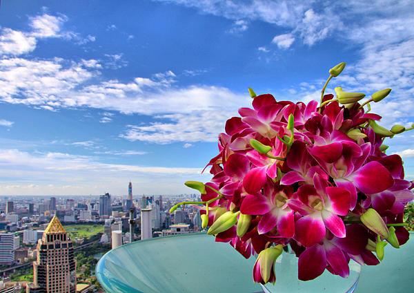 Elegant Orchids Print by Suradej Chuephanich