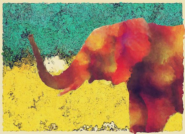 Jack Zulli - Elephant - Happened At The Zoo