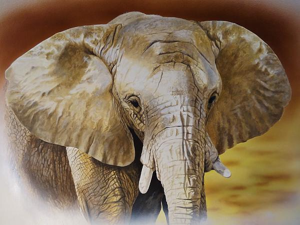 Elephant Print by Julian Wheat