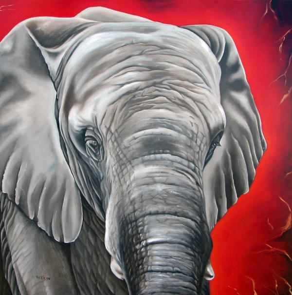 Elephant Six Of Eight Print by Ilse Kleyn