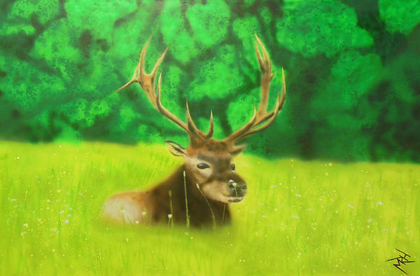 Elk In The Distance Print by Michael Hall