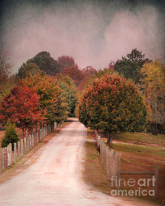 Enter Fall Print by Jai Johnson