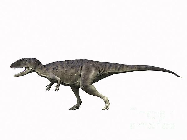 Eocarcharia Dinops, Early Cretaceous Print by Nobumichi Tamura