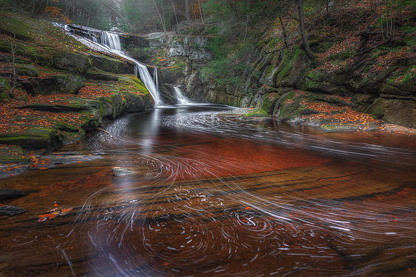 Ethereal Autumn Print by Bill  Wakeley