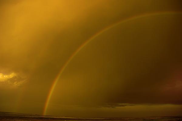 Everyone Needs A Rainbow Print by Jeff  Swan