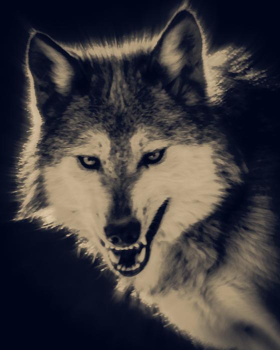 Evil Wolf Print by Ernie Echols