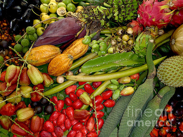 Exotic Fruits Print by Carey Chen