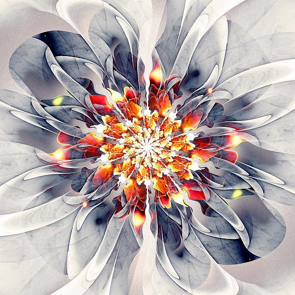 Exquisite Print by Anastasiya Malakhova