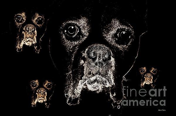 Eyes In The Dark Print by Maria Urso