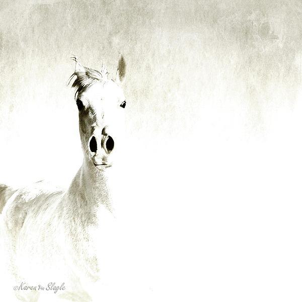 Fade To White Print by Karen Slagle