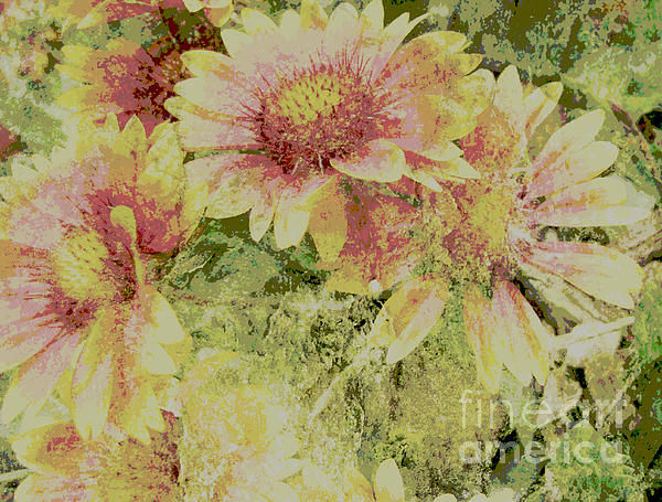 Faded Love Abstract Floral Art Print by Ann Powell