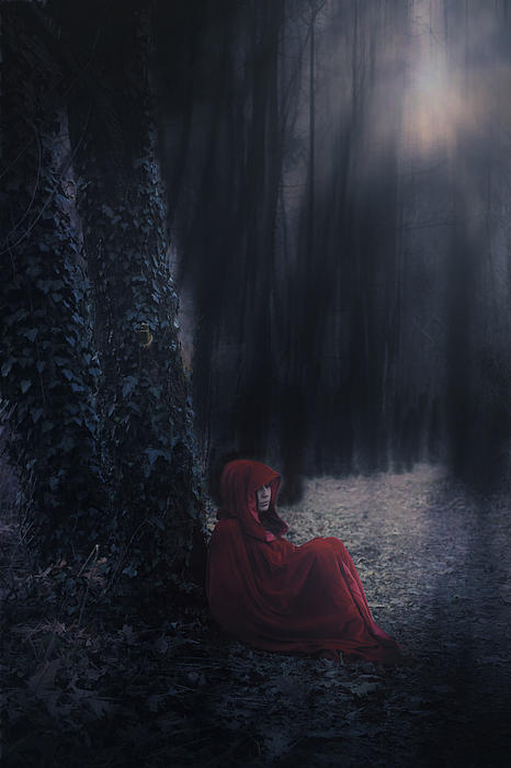 Fairy Tale Print by Joana Kruse