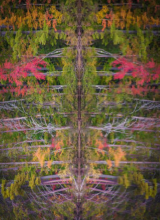 Fall Abstract Print by Karen Stephenson