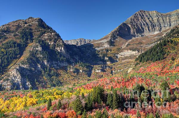 Gary Whitton - Fall at Mt. Timpanogos from Sundance - Utah