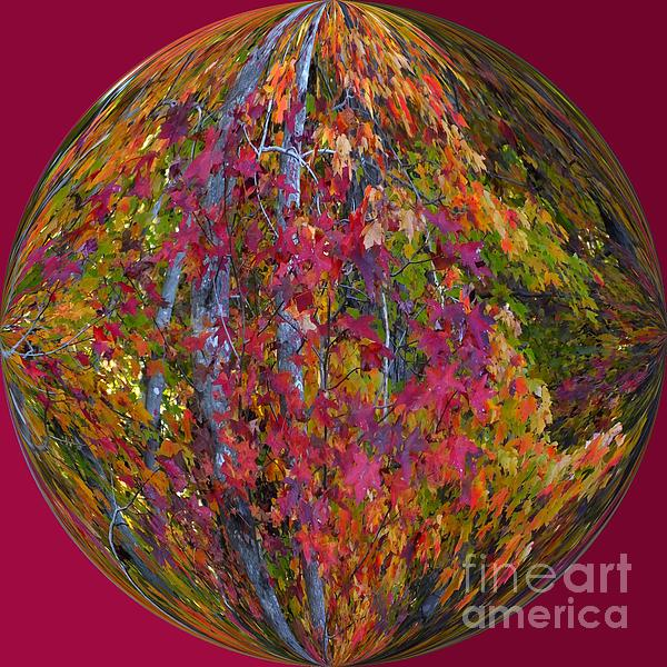 Fall Beauty Print by Scott Cameron