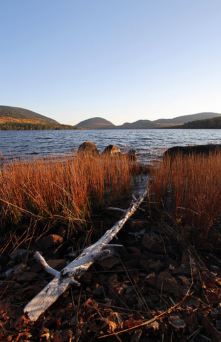 Fall Colors At Eagle Lake In Maine Print by Juergen Roth