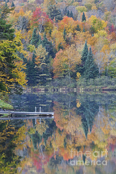 Alan L Graham - Fall Colors On Nelson Pond
