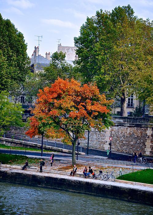 Fall Colors On The Seine Print by Matt MacMillan