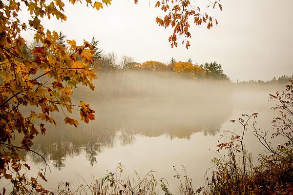 Fall Foggy Day  Print by Allan Millora