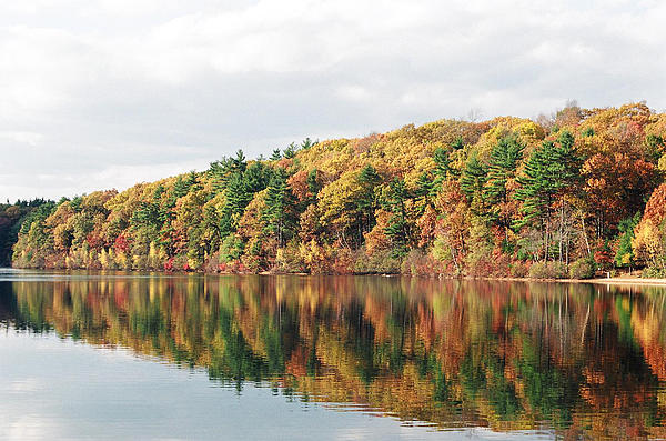 Fall Foliage At Walden Pond Print by John Sarnie