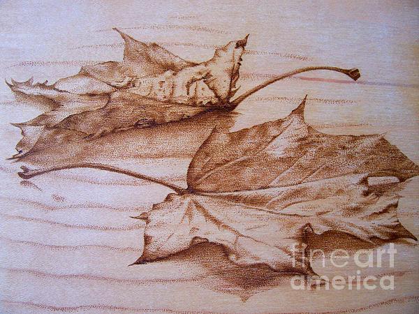 Fall In Print by Cynthia Adams