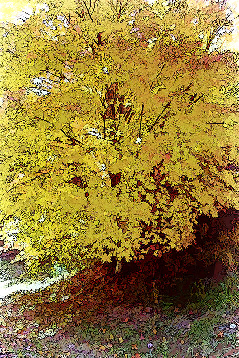 Fall In Yellow Print by Larry Bishop