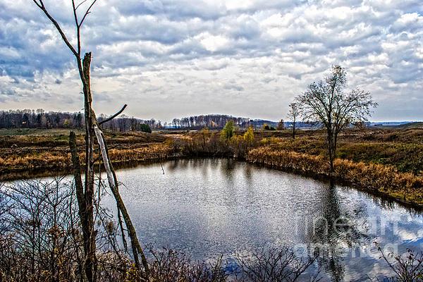 Miss Dawn - Fall Morning Natural Pond Autumn Landscape