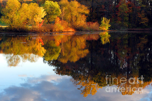Fall Scene Print by Olivier Le Queinec