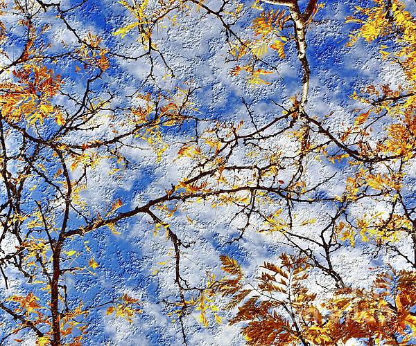 Tatiana Lopatina - Fall sky