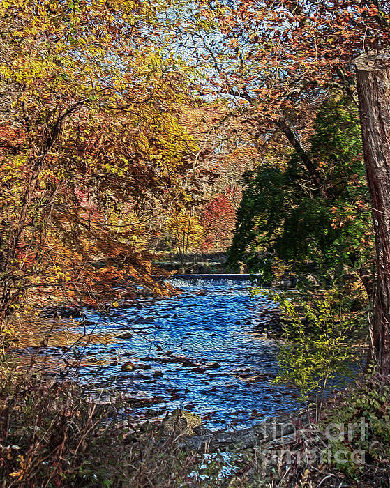 Tom Gari Gallery-Three-Photography - Fall Stream