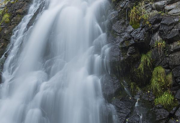 Falling Water Print by Loree Johnson