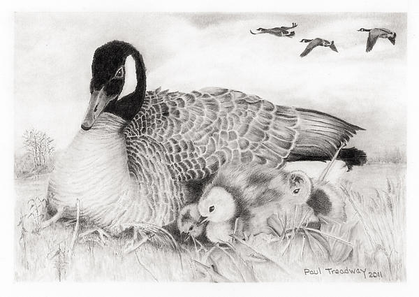Family Print by Paul Treadway