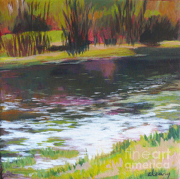 Fanno Creek Beaverton Print by Melody Cleary