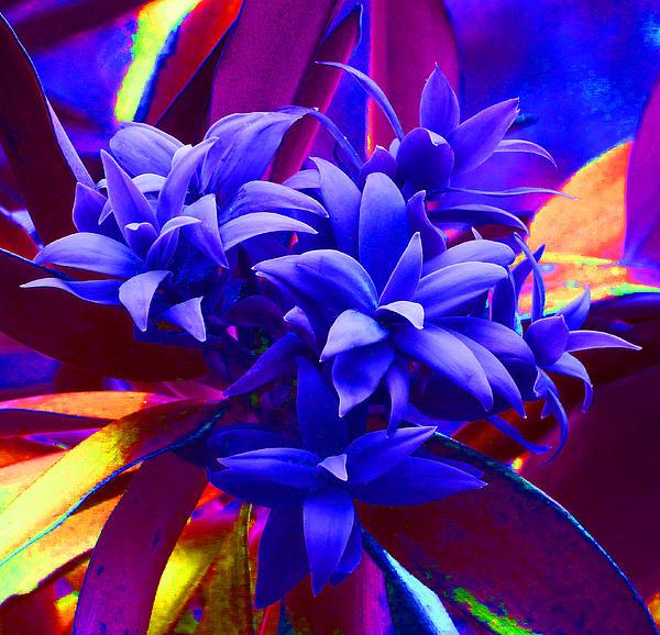 Margaret Saheed - Fantasy Pine
