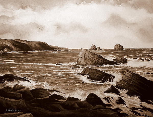 Faraid Head Durness Scotland Print by Andrew Read