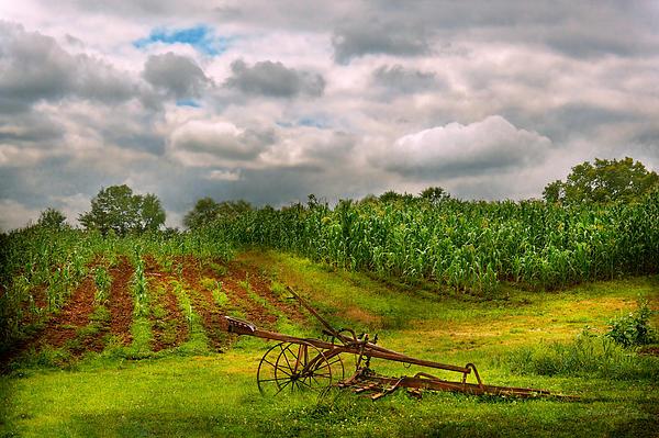 Farm - Organic Farming Print by Mike Savad