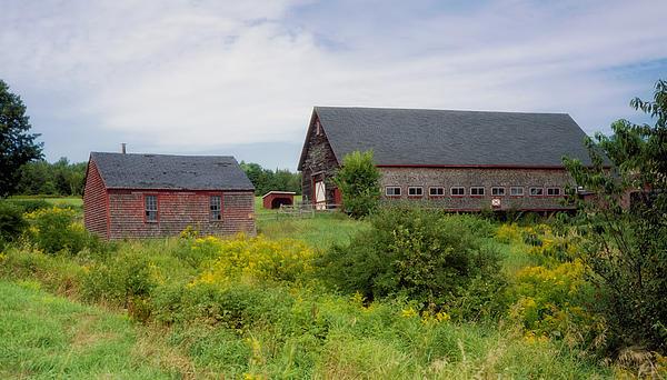 Farm Scene In Rural Maine Print by Mountain Dreams